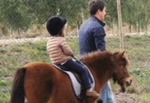 paseos en pony en zaragoza