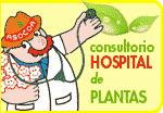 El Doctor Planta pasa consulta
