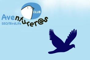 Club aventureros SEO/Birdlife Aragón
