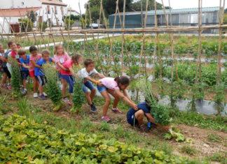 granja escuela latorre