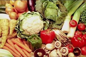 Descubre los alimentos con los cinco sentidos