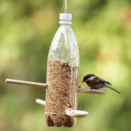 Hacemos un comedero para pájaros