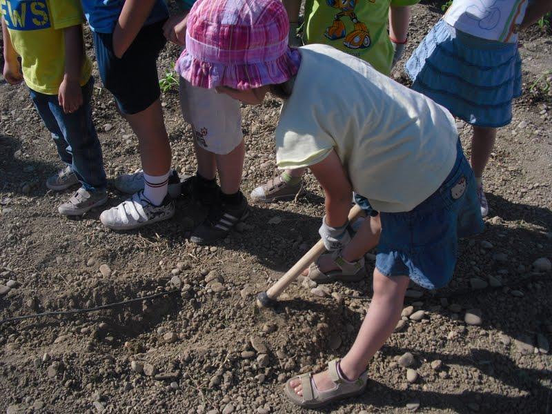 Taller de huerto para niños en el CIAR de La Alfranca
