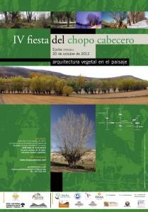 IV fiesta Chopo Cabecero
