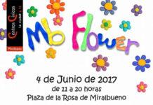 mb Flower 2017