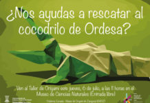 cocodrilo, museo CC Naturales