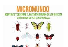 micromundo, en el cus