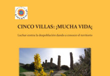 cinco vilas