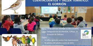 GORRION